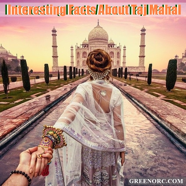Interesting Facts About Taj Mahal (5)
