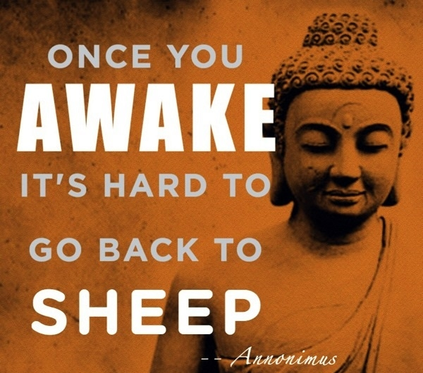 Buddha Quotes On Life,Peace and Love (10)
