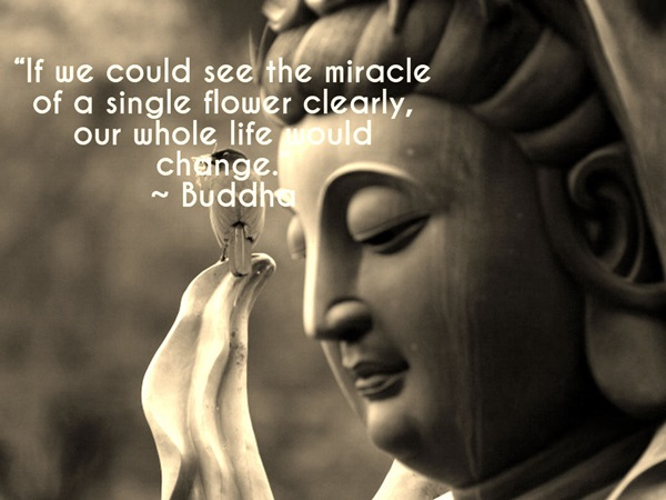 Buddha Quotes On Life,Peace and Love (12)