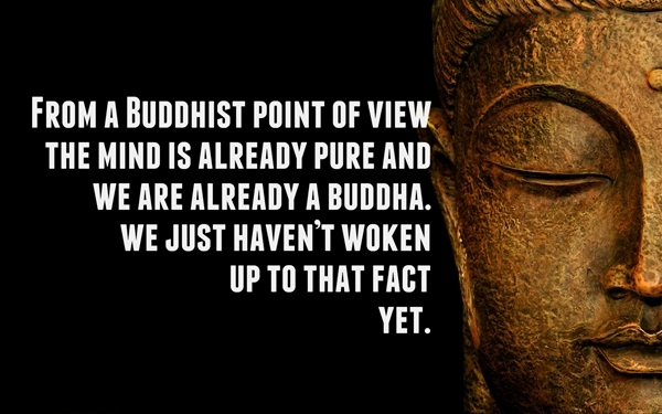 Buddha Quotes On Life,Peace and Love (21)