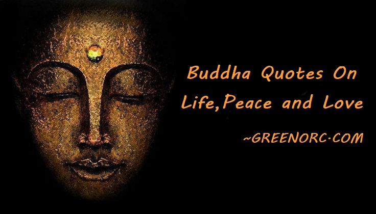 Buddha Quotes On Life,Peace and Love