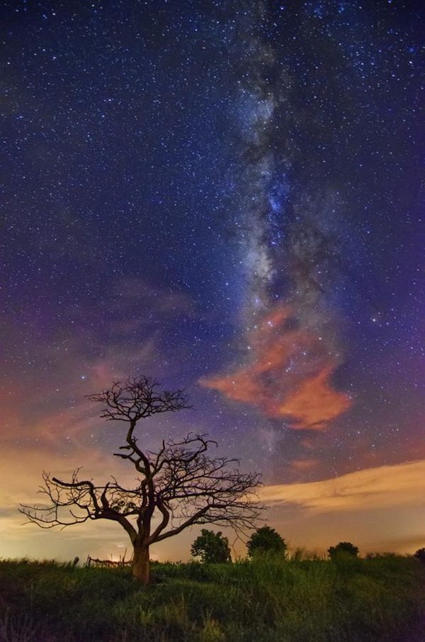 Meteor Shower Photography Ideas (1)