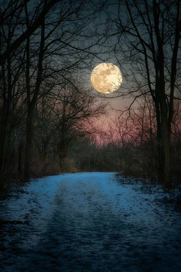 Fascinating-Full-Moon-Photography-Tips-and-Ideas